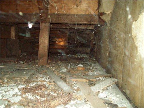 Stairway crawlspace